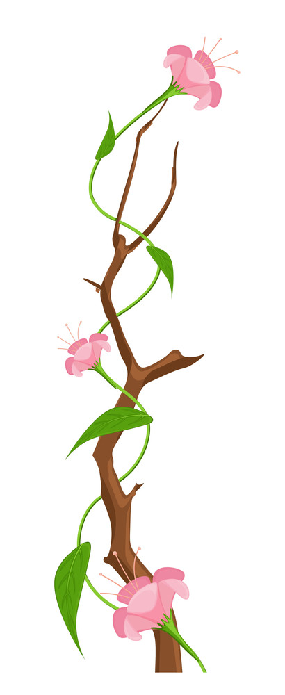 Decorative Pink Flowers Branch Vector