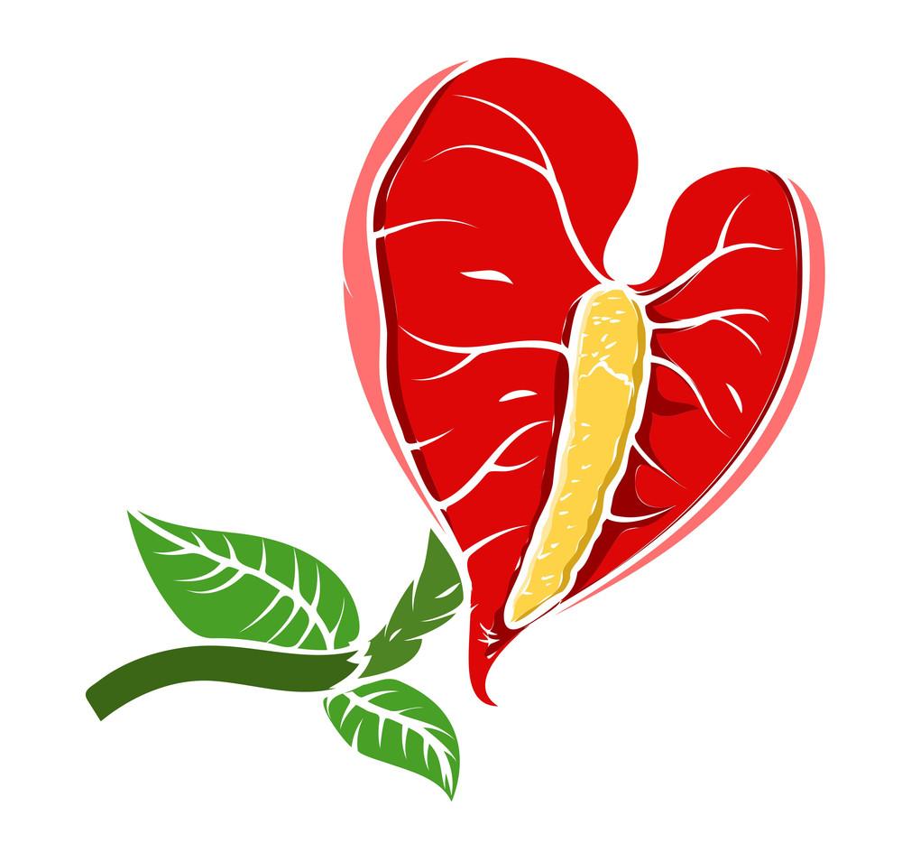 Decorative Red Leaf Flower Vector