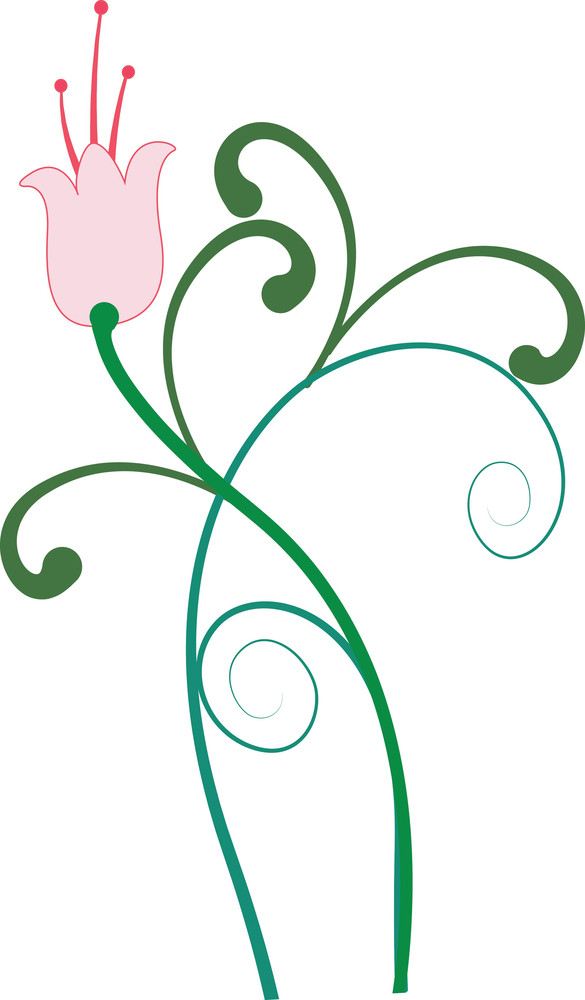 Decorative Swirl Elements