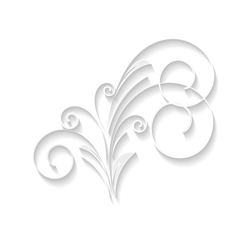 Decorative White Floral Vector
