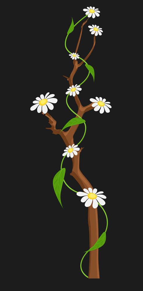 Decorative White Flowers Branch Vector