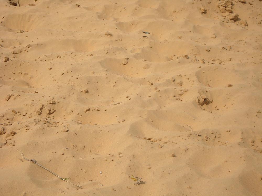 Desert_texture