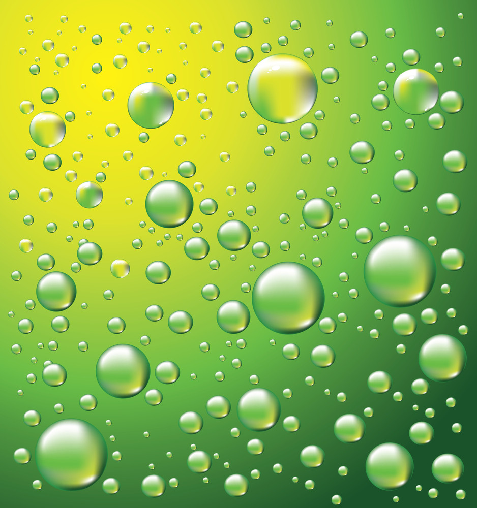 Dew Drops Vector Background
