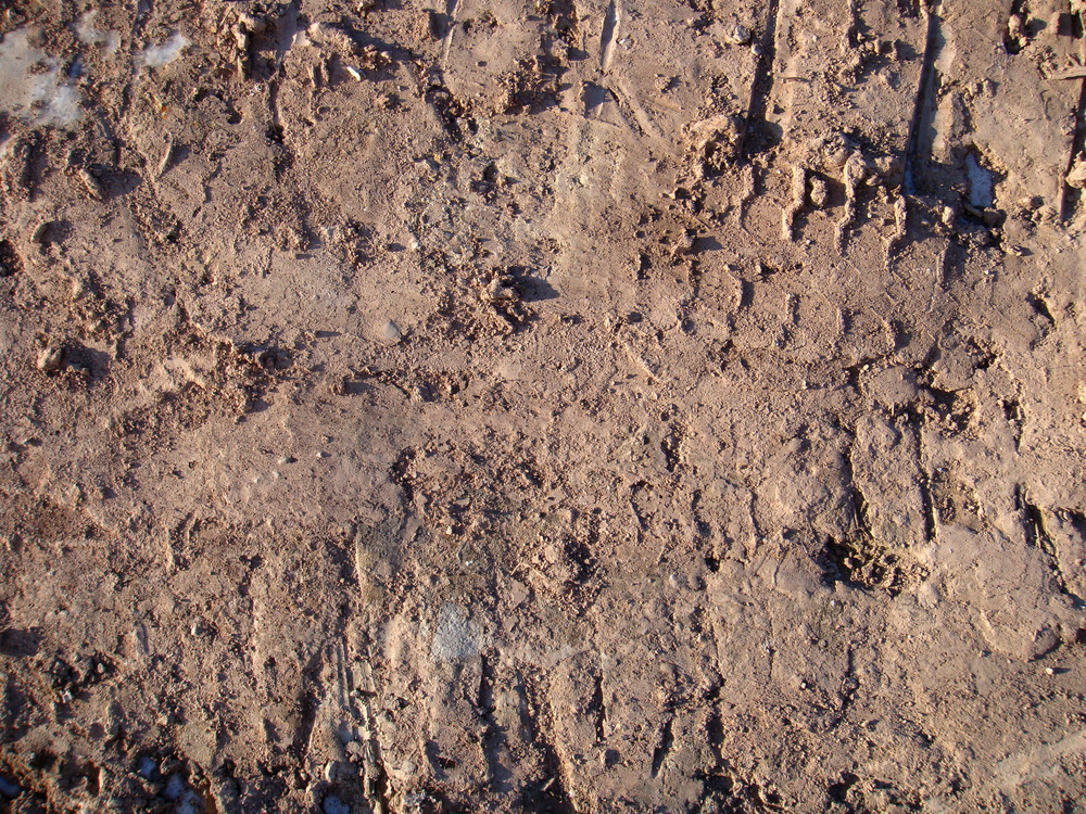 Dirt And Mud 1 Texture