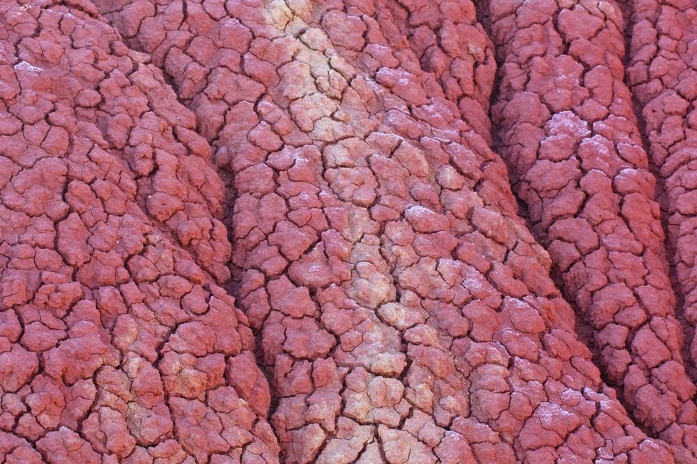 Dirty Dry Soil Texture