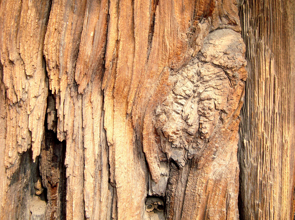 Distressed_wood