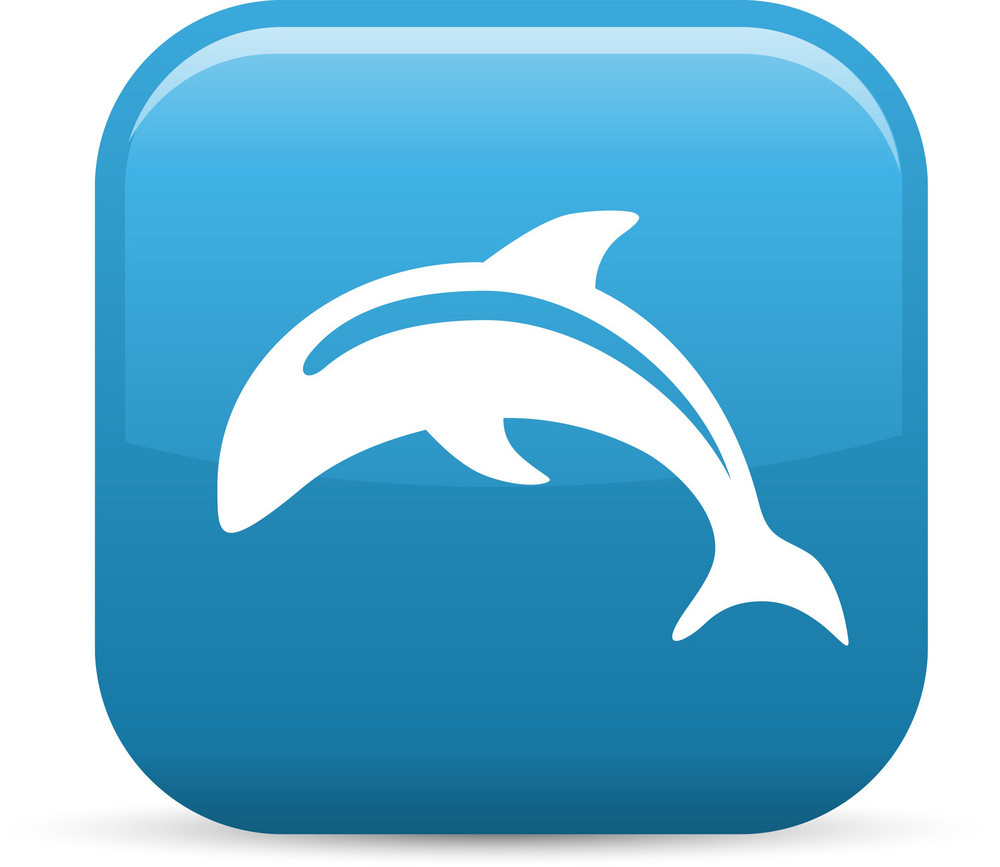 Dolphin Elements Glossy Icon