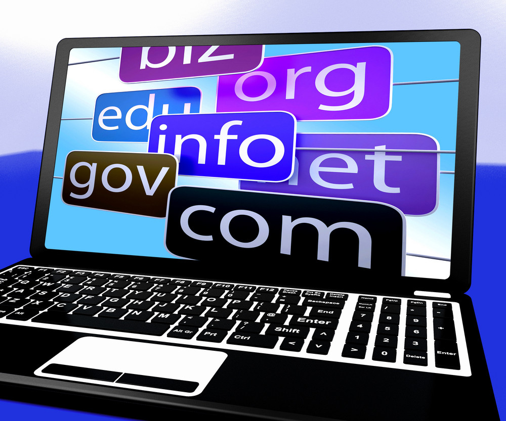 Domains On Laptop Showing Internet Websites