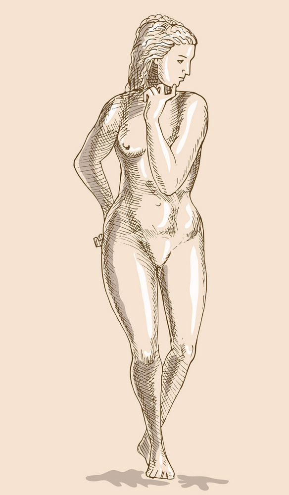 Drawing Of The Female Human Anatomy Figure Royalty-Free Stock Image ...