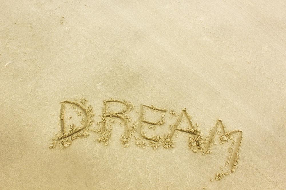 Dream San Writting