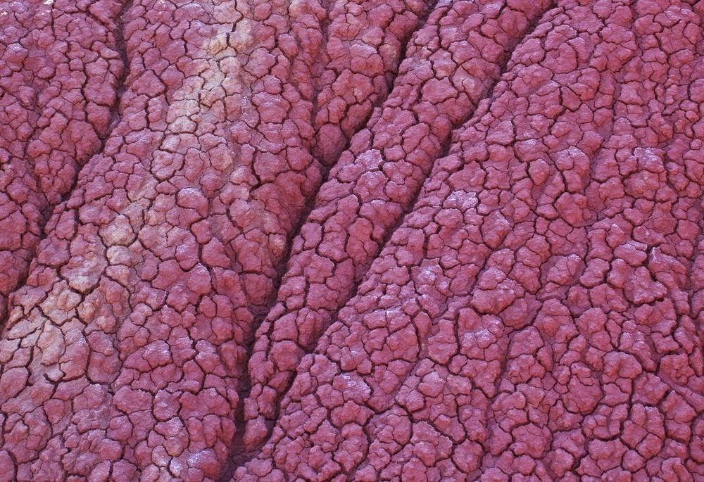 Dry Damage Soil Texture