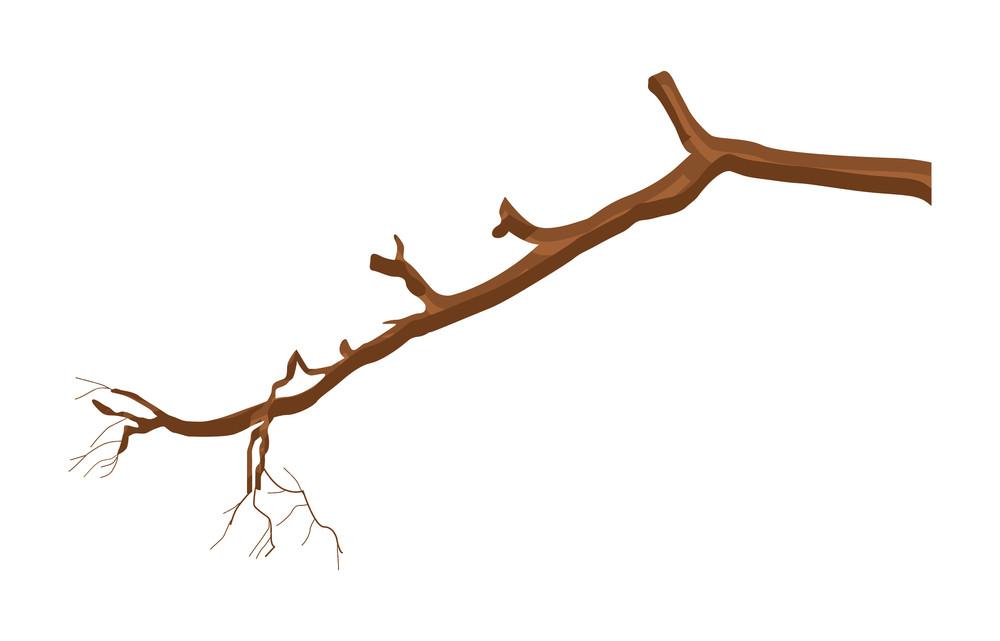 Dry Tree Branch Element