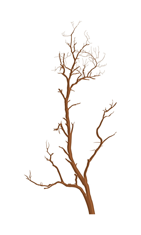 Dry Tree Vector Design