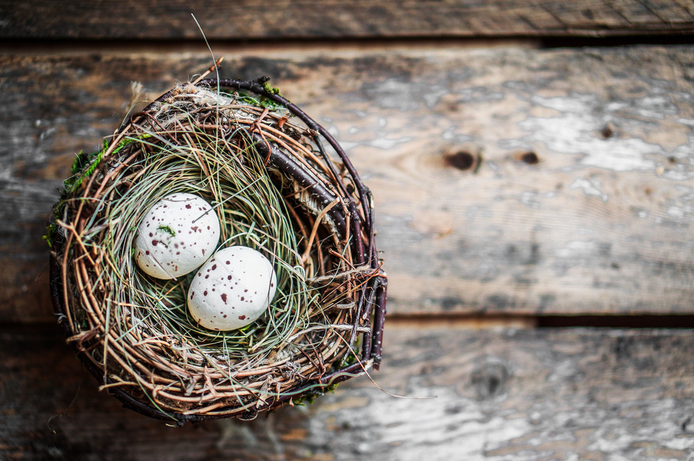 Easter Egg Nest On Rustic Wooden Background