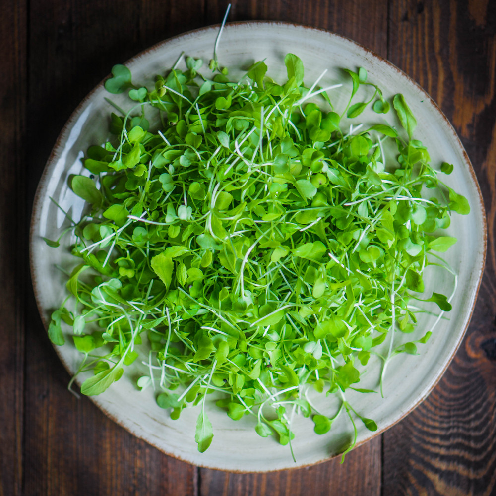 Raw Sprouts(microgreens) On Wooden Background