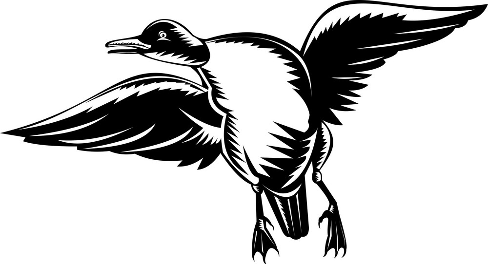 Duck Flying Done In Woodcut Style