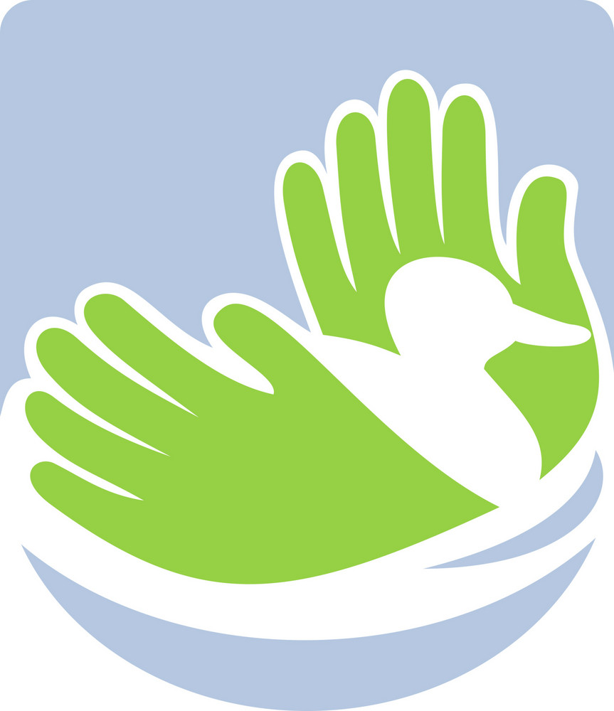 Duck Swimming With Hands Icon