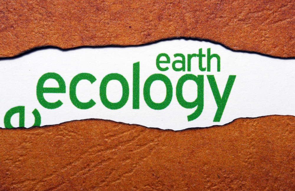 Earth Ecology Concept