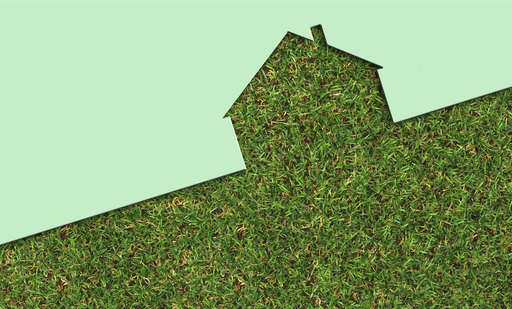 Echo House Metaphor