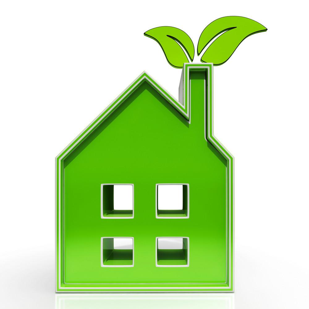 Eco House Shows Environmental Home