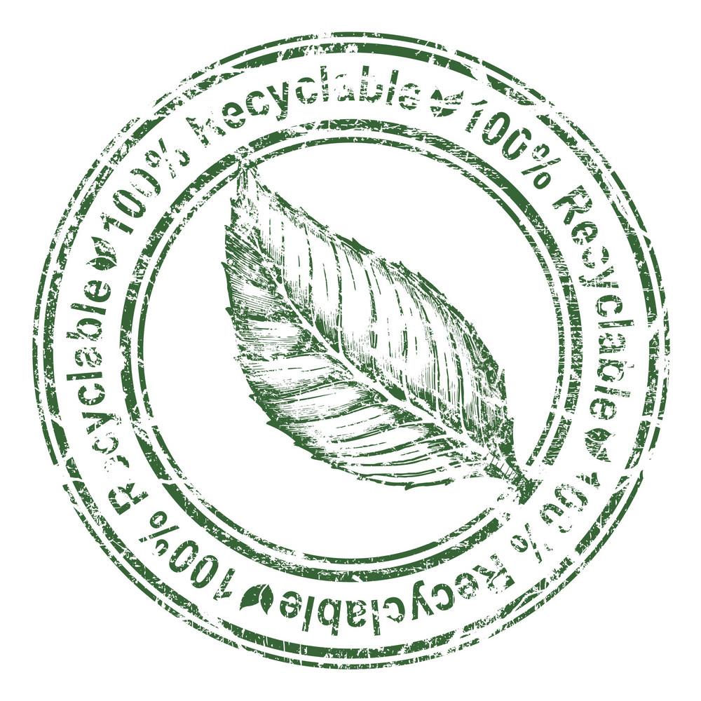 Eco Stamp With Leaf Vector Illustration
