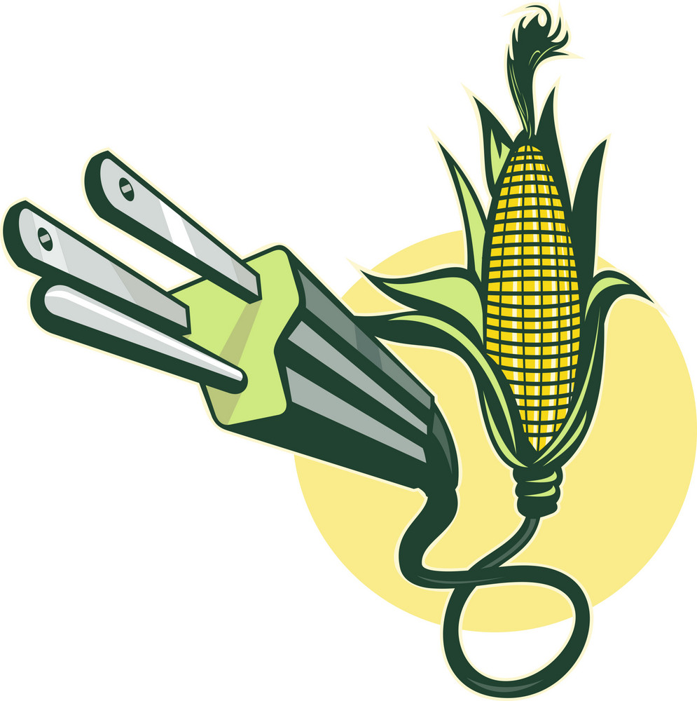 Electric Power Plug Coming Out Of Corn