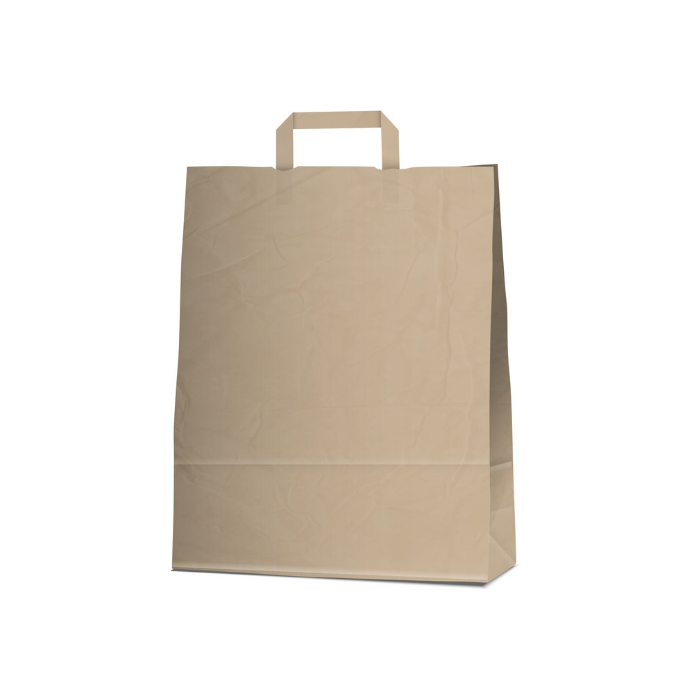 Empty Carrier Brown Bag On White