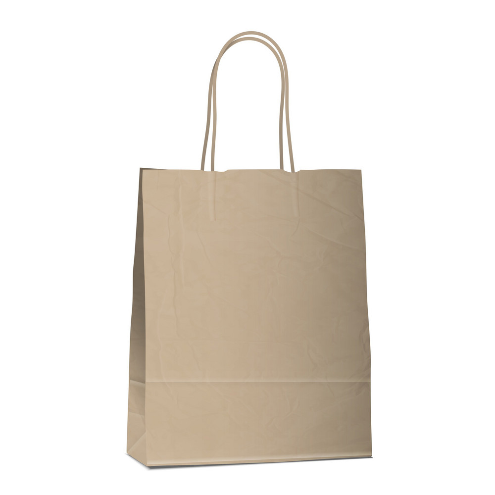 Empty Shopping Brown Bag On White