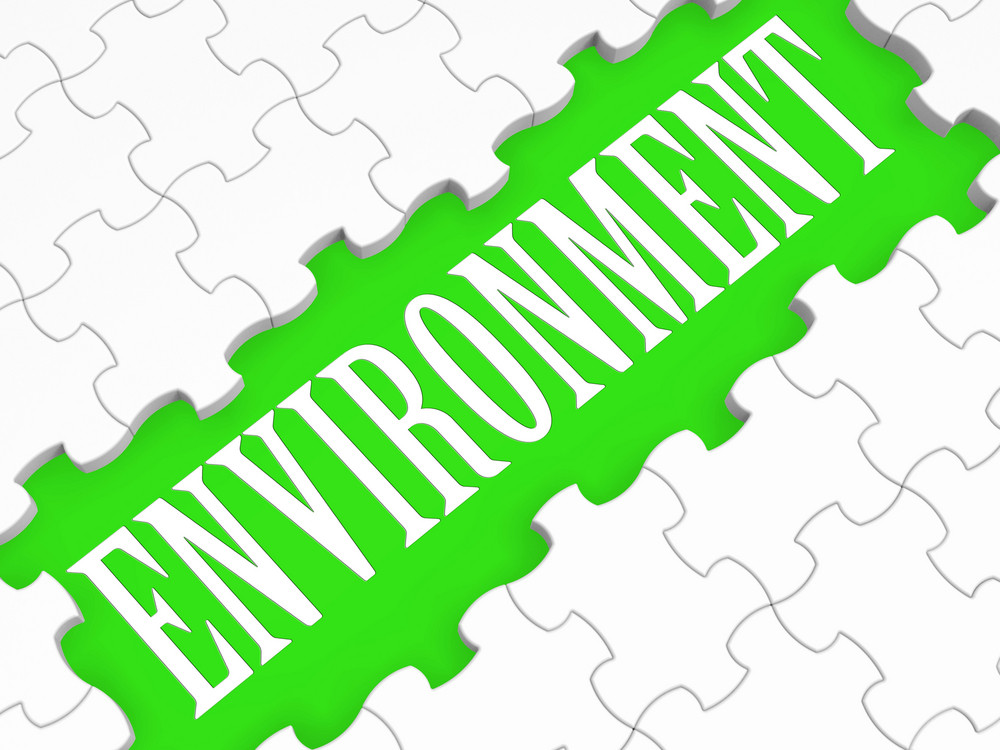 Environment Puzzle Shows Ecological Conservation