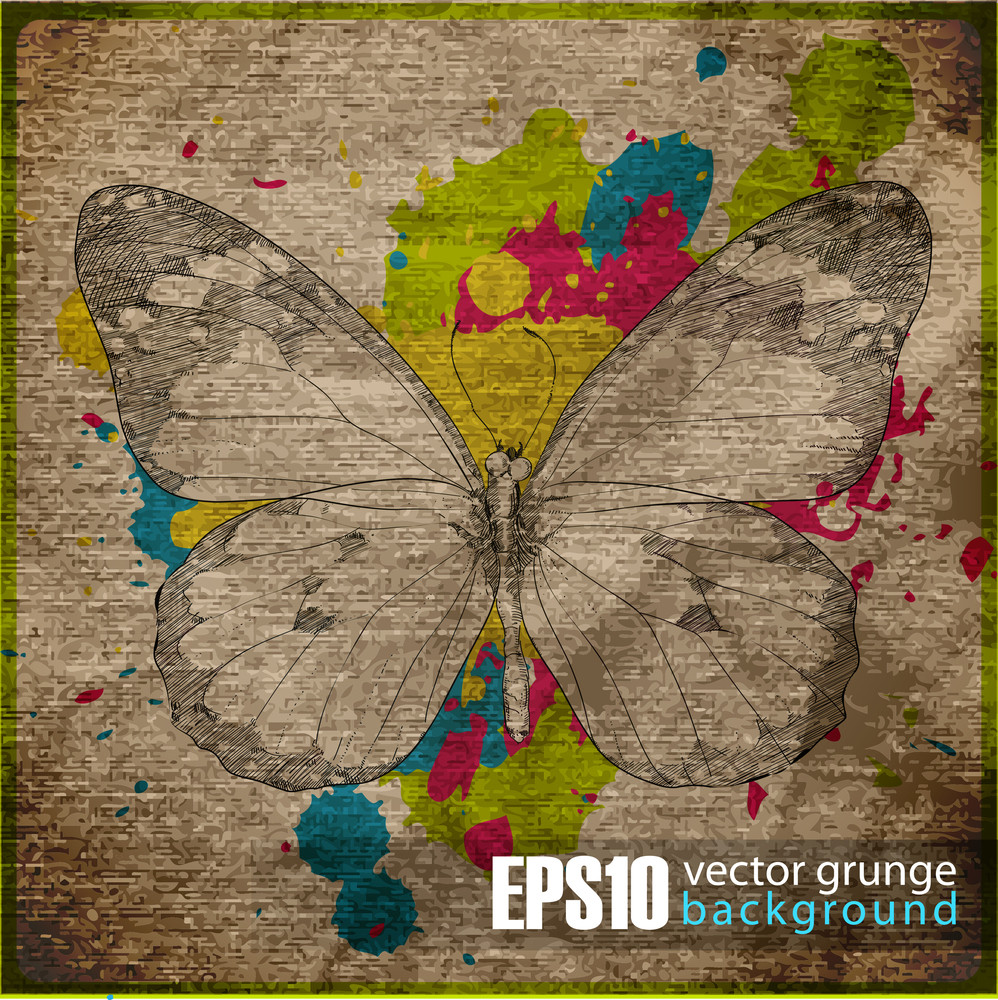 Eps10 Vintage Background With Butterfly