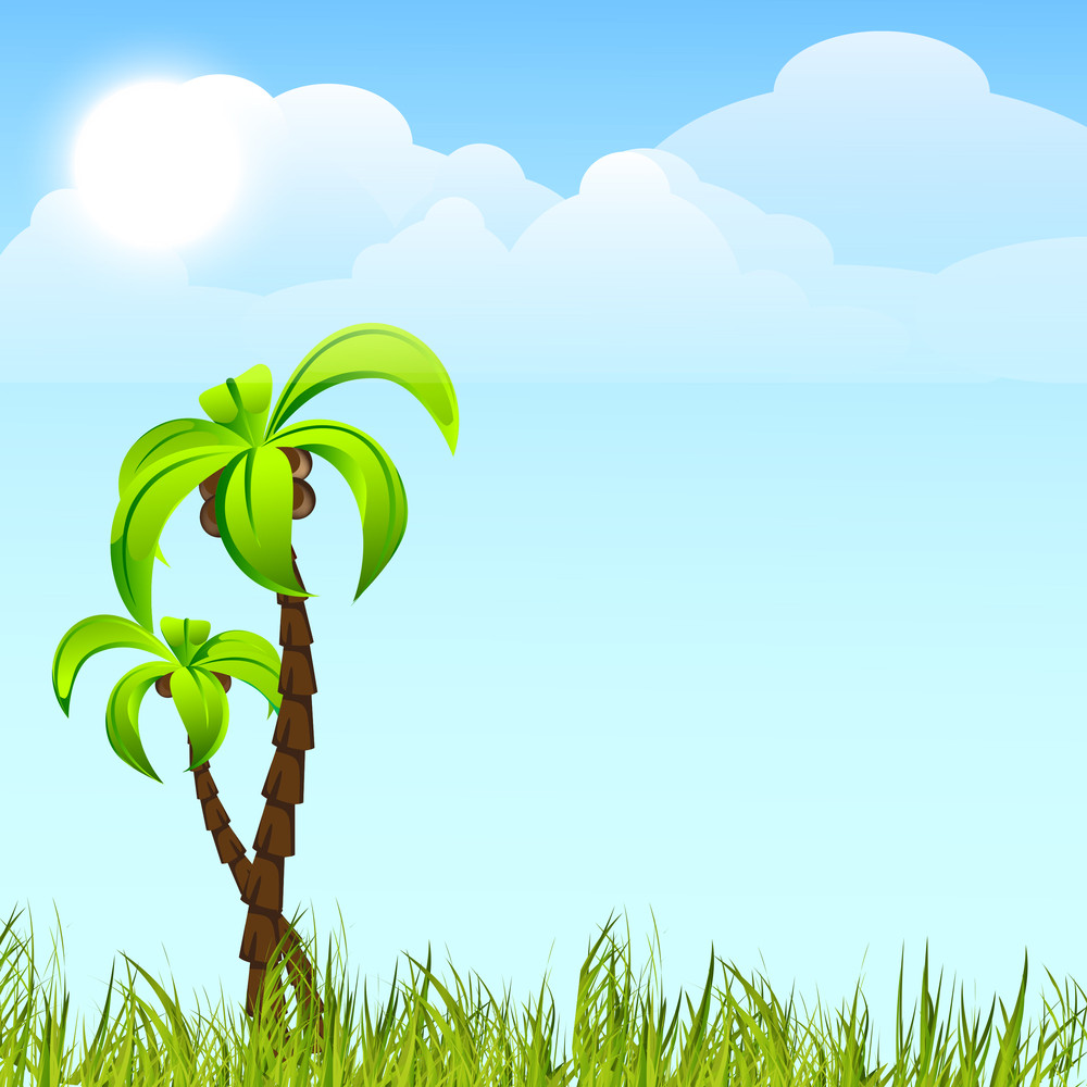 Evening Summer With Palm Trees On Nature Background