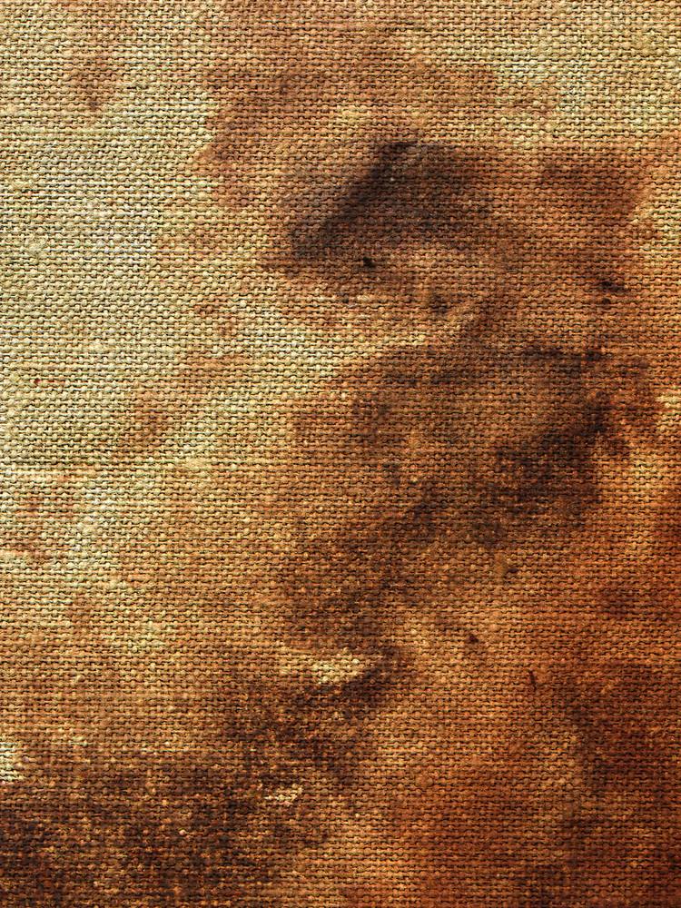 Fabric Grunge 2 Texture