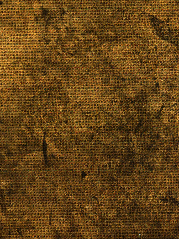 Fabric Grunge 5 Texture