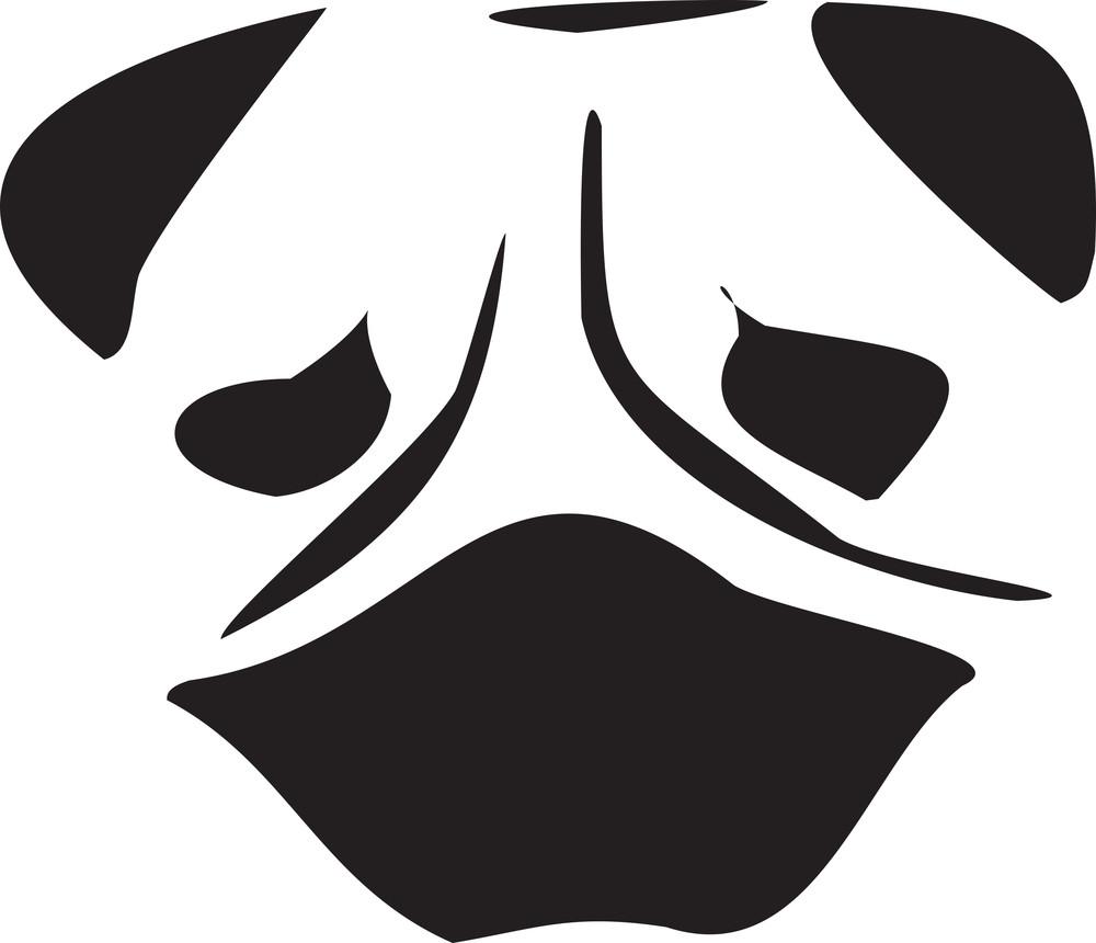 Face Of A Pug Dog.