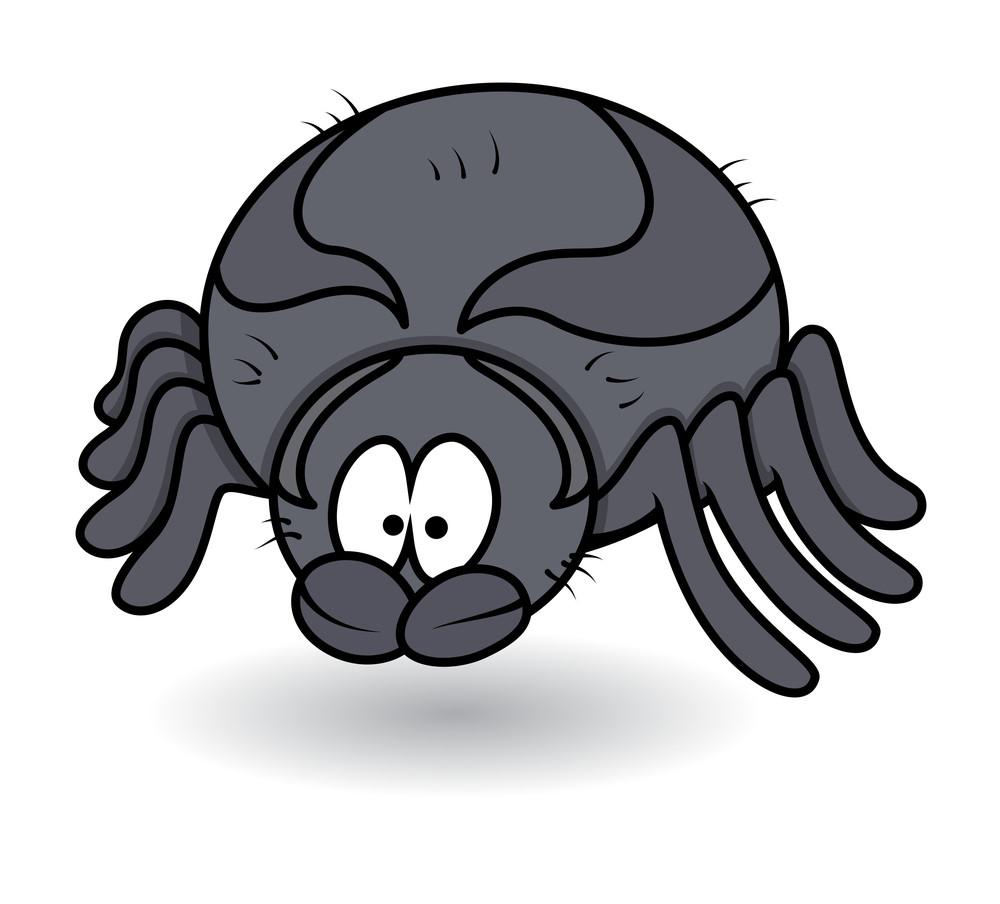 Fat Spider Male Cartoon - Halloween Vector Illustration