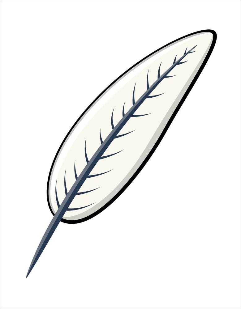 Feather - Cartoon Vector Illustration