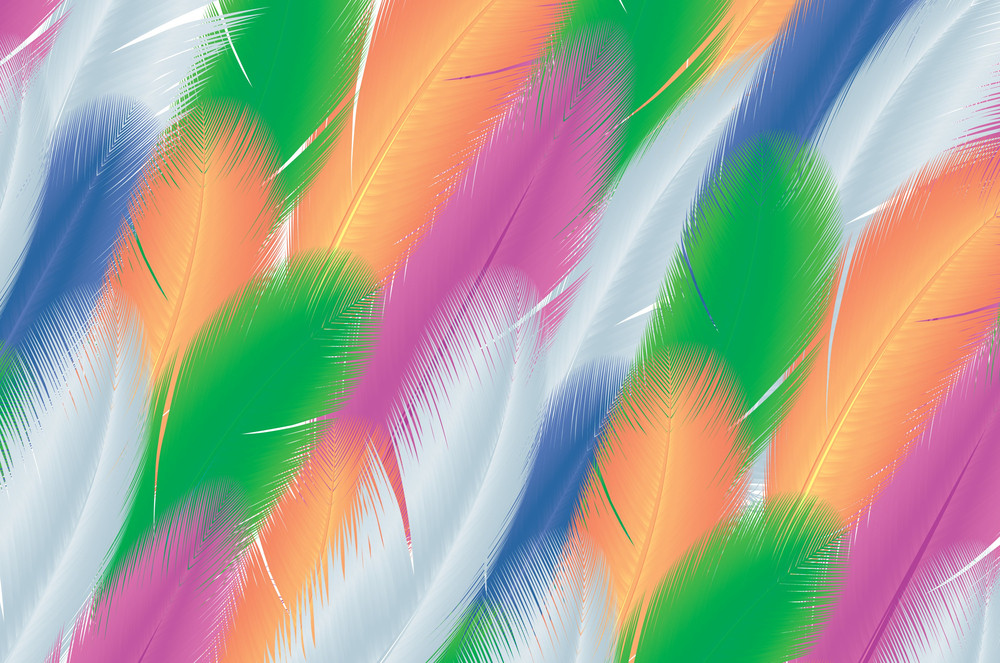 Feathers. Vector Background.