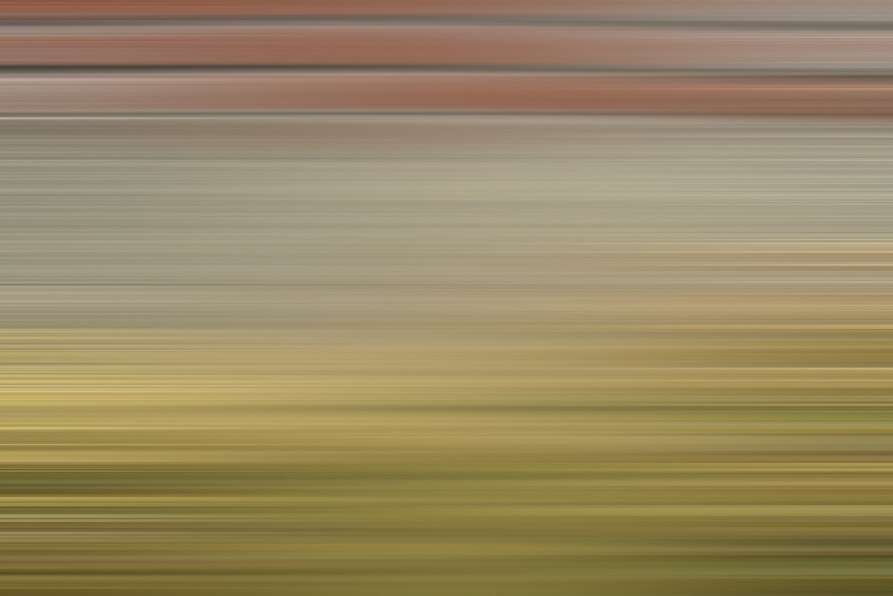 Festive Motion Background