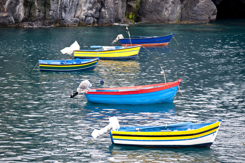 Fishing Boats On Madeira
