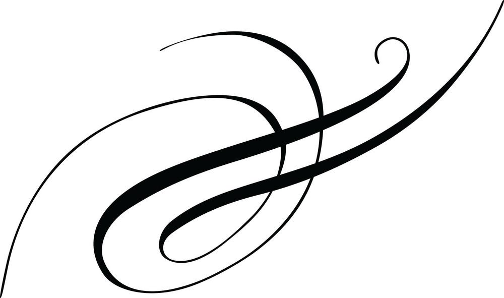 Floral Calligraphic Vector Element