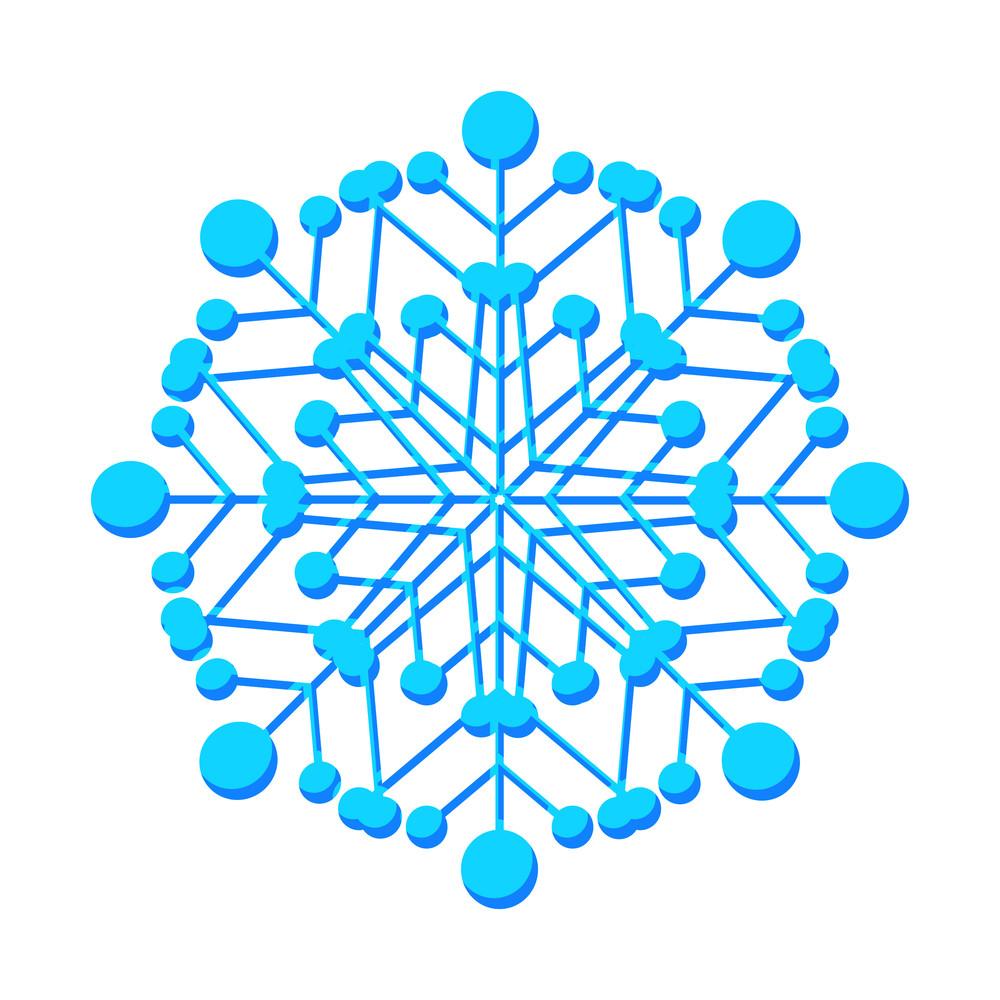 Floral Design Snowflake