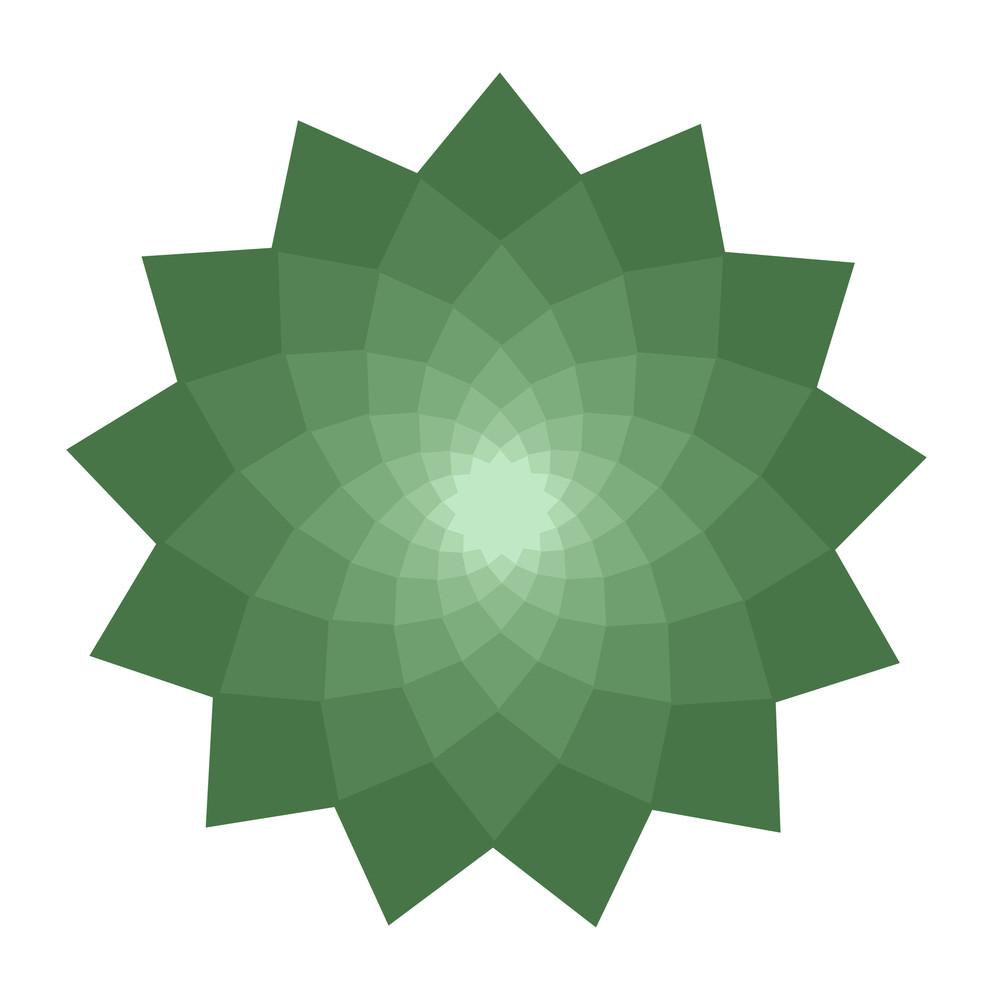 Floral Star Element