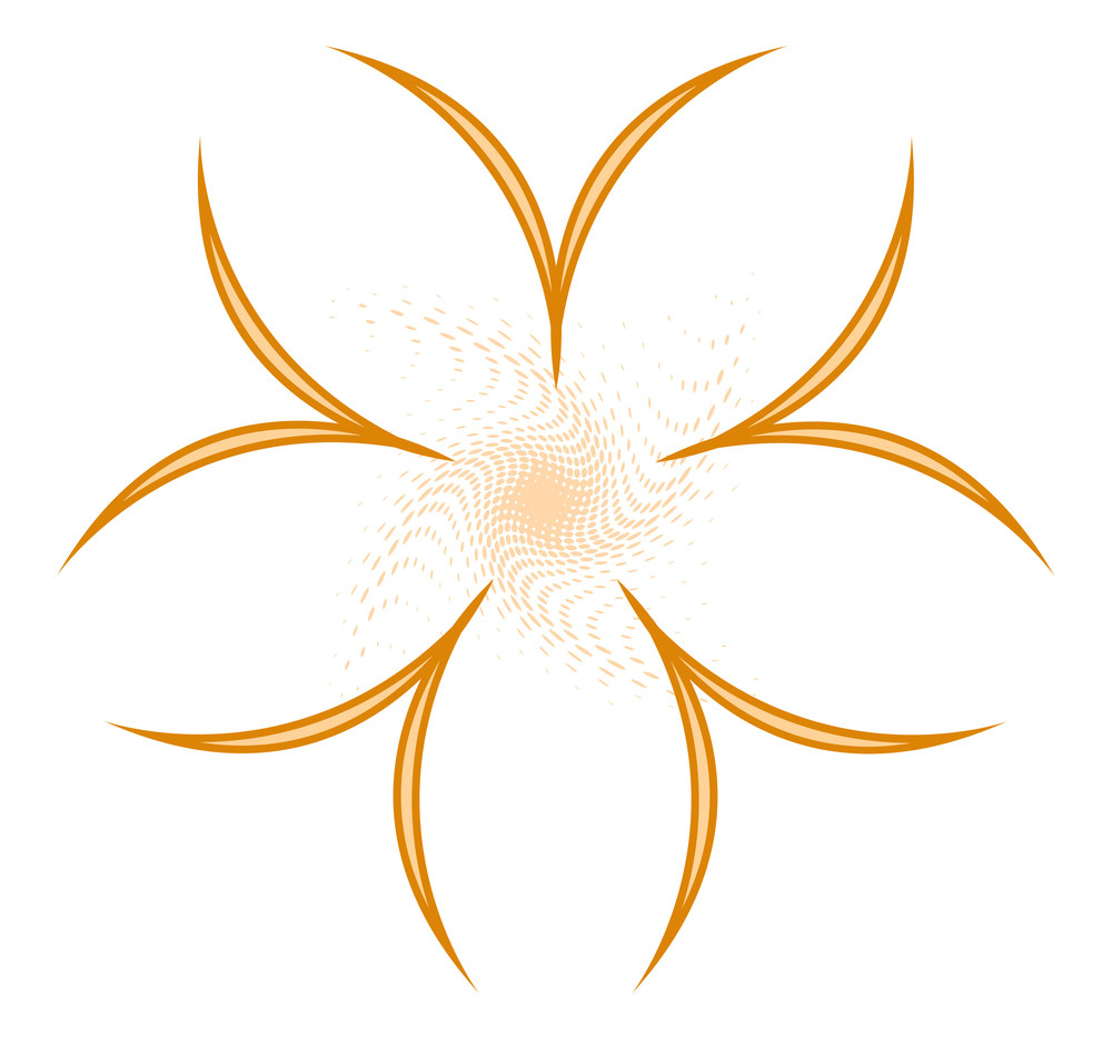 Floral Star