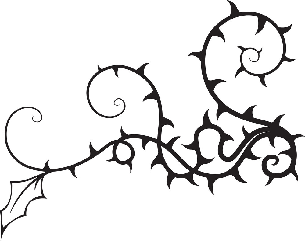 Floral Thorn Vector Element