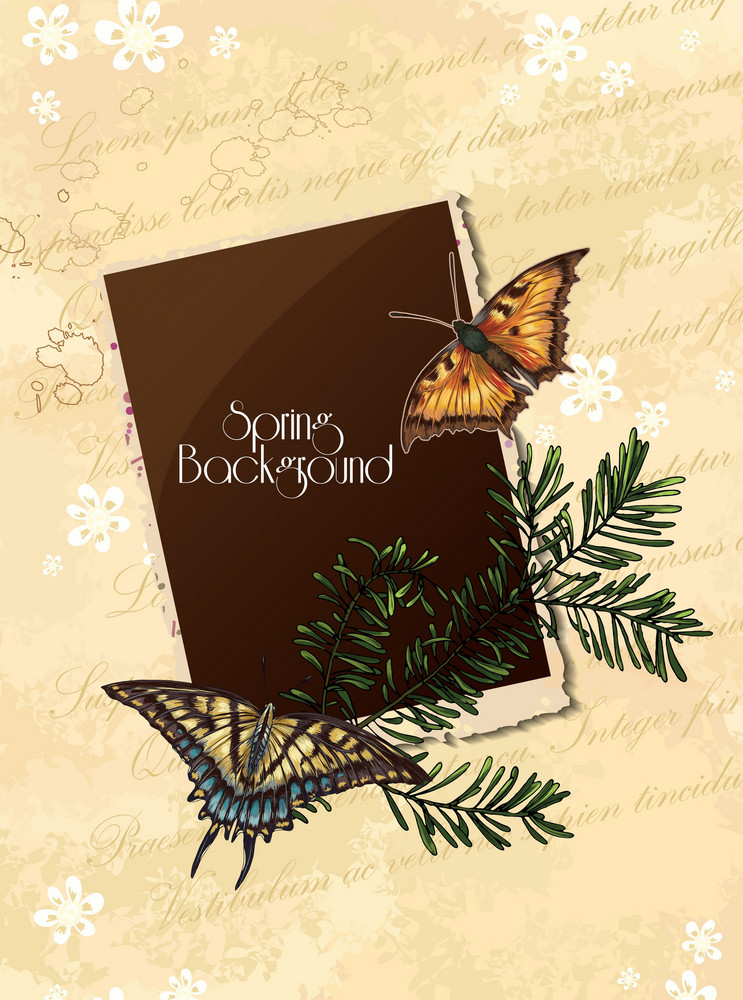 Floral Vector Background Illustration With Butterfly And Photo Frame