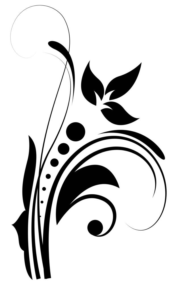 Flourish Design Element Vector