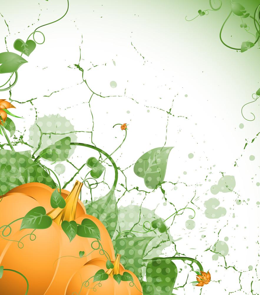 Flourish Pumpkin Grunge Background