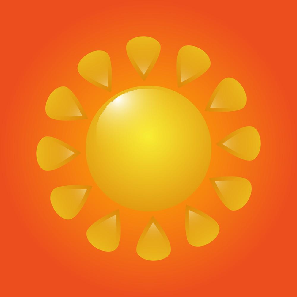 Flourish Sun Vector