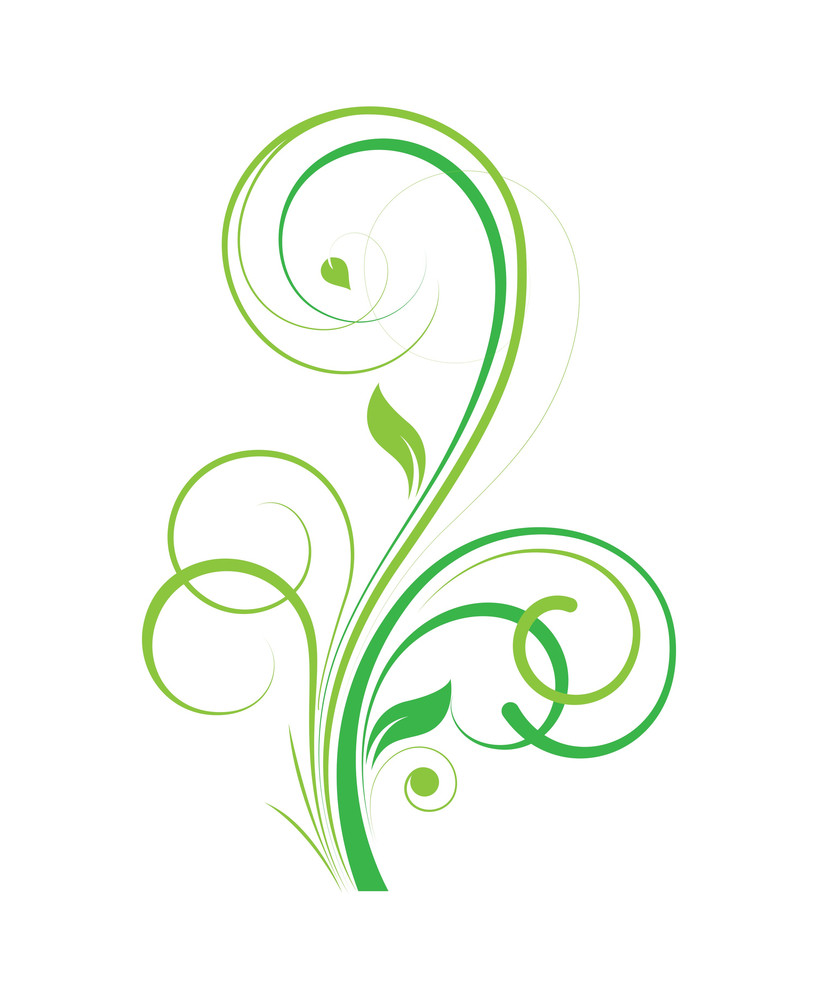 Flourish Swirl Design