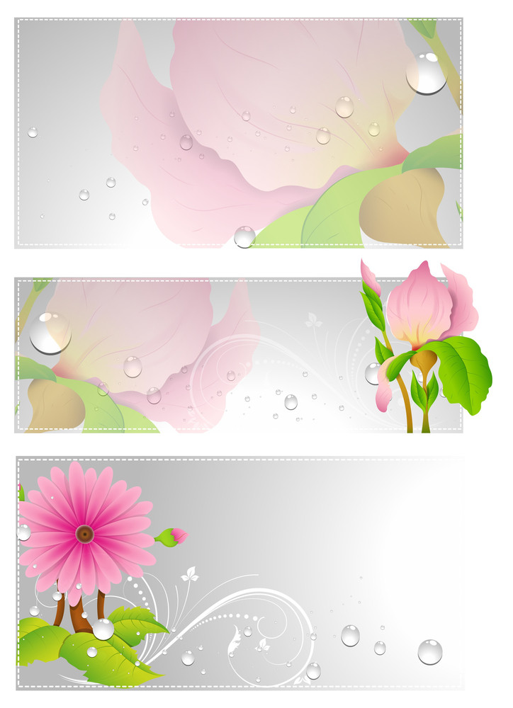 Flourish Vector Banners